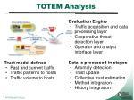 totem analysis