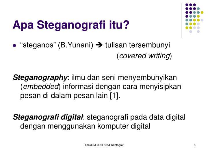 Apa Steganografi itu?