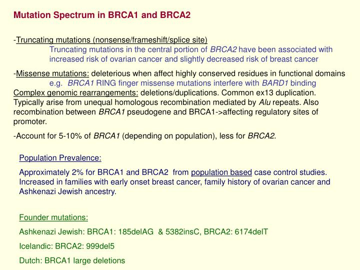 Mutation Spectrum in BRCA1 and BRCA2