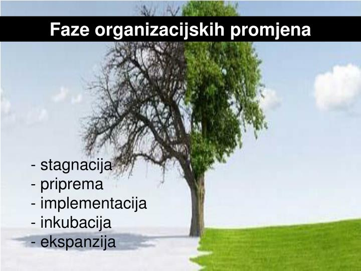 Faze organizacijskih promjena