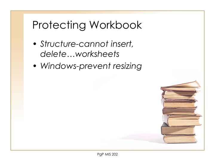 Protecting Workbook