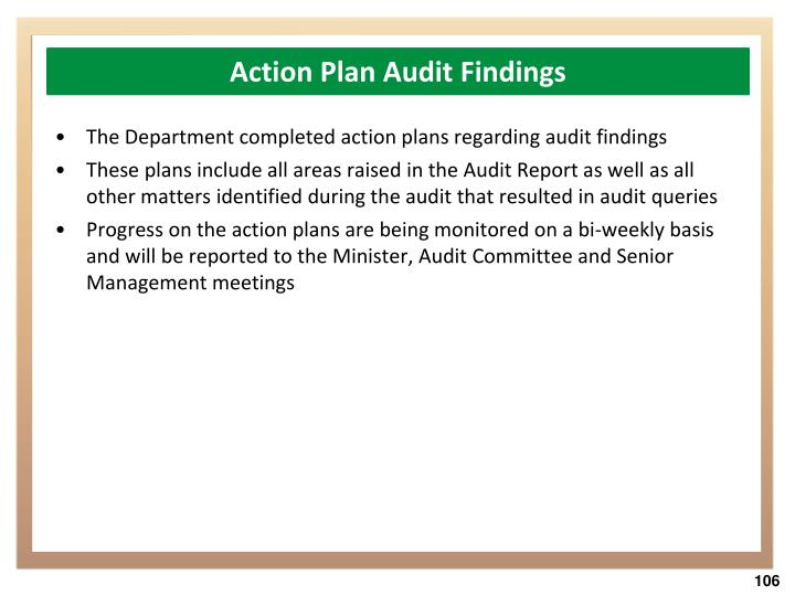 Action Plan Audit Findings