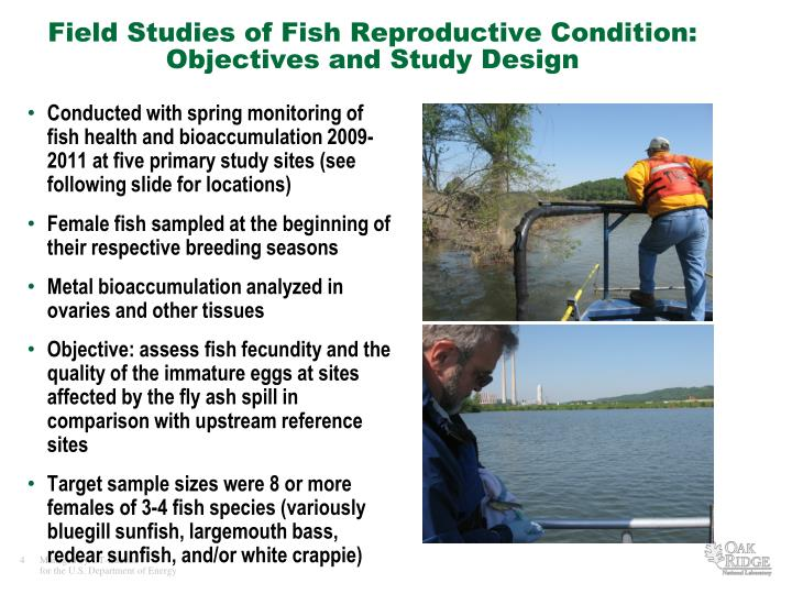 Conducted with spring monitoring of fish health and bioaccumulation 2009-2011 at five primary study sites (see following slide for locations)