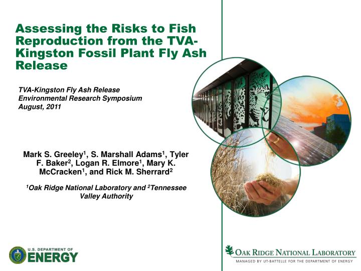 Assessing the Risks to Fish Reproduction from the TVA-Kingston Fossil Plant Fly Ash Release