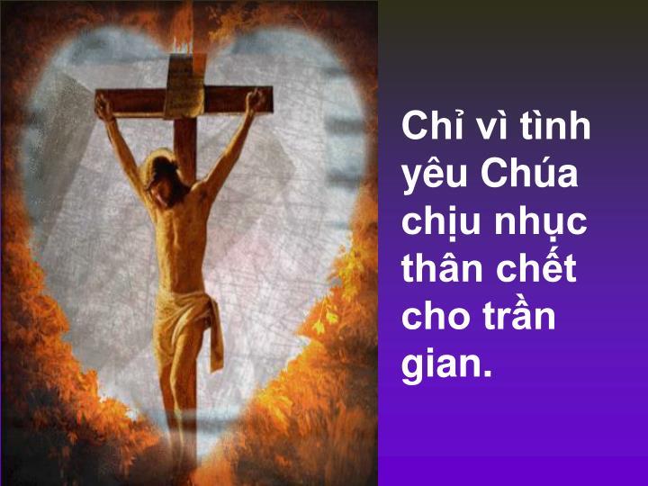 Chỉ vì tình yêu Chúa chịu nhục thân chết cho trần gian.