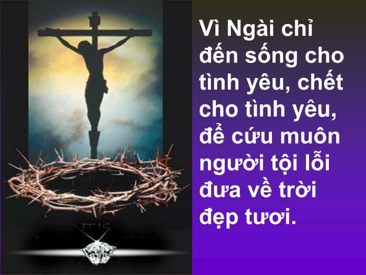 Vì Ngài chỉ đến sống cho tình yêu, chết cho tình yêu, để cứu muôn người tội lỗi đưa về trời đẹp tươi.