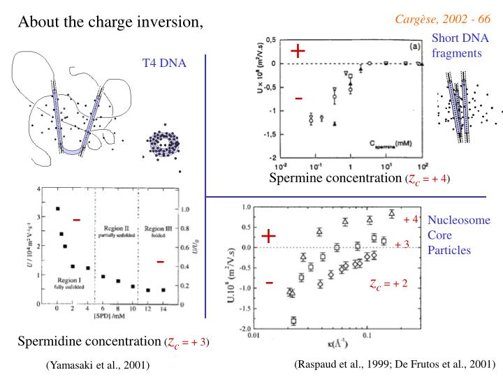 About the charge inversion,