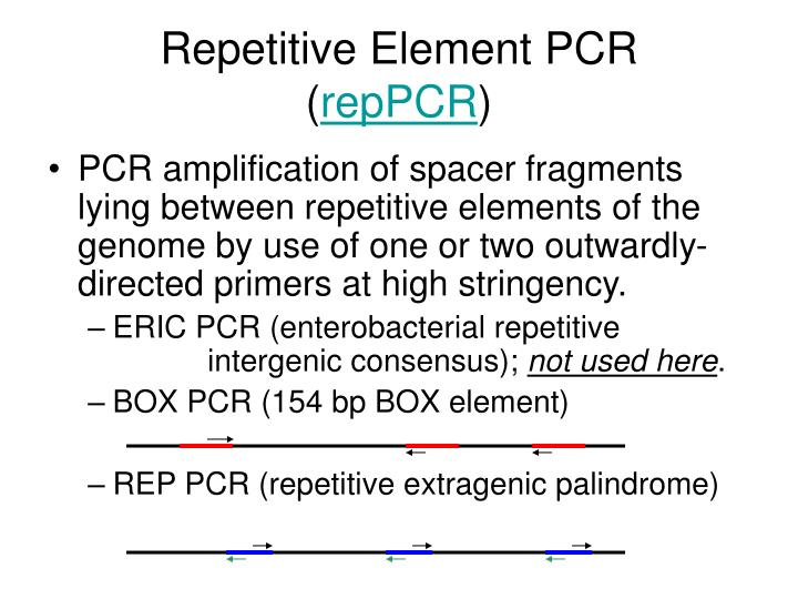 Repetitive Element PCR