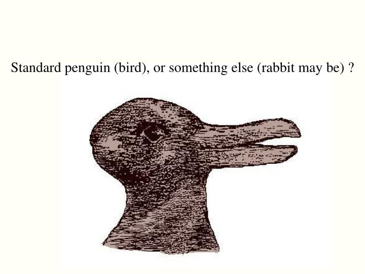 Standard penguin (bird), or something else (rabbit may be) ?