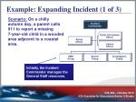 example expanding incident 1 of 3