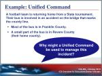 example unified command