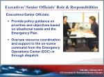 executives senior officials role responsibilities