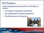 ics purposes