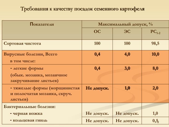Требования к качеству посадок семенного картофеля