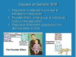 causes of genetic drift