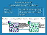 perturbations of hardy weinberg equilibrium2