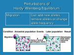 perturbations of hardy weinberg equilibrium3