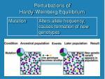perturbations of hardy weinberg equilibrium4