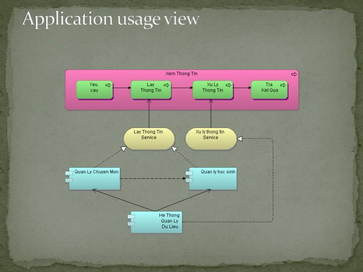 Application usage view