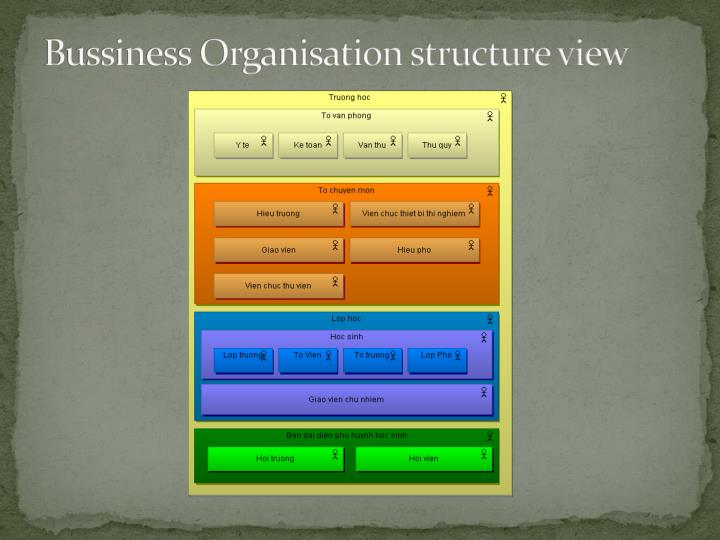 Bussiness Organisation structure view