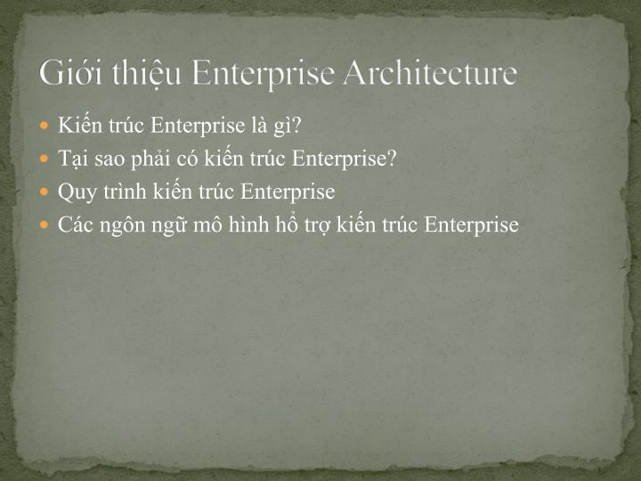 Gi i thi u enterprise architecture
