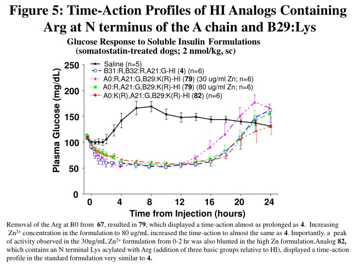 Figure 5: Time-Action Profiles of HI Analogs Containing
