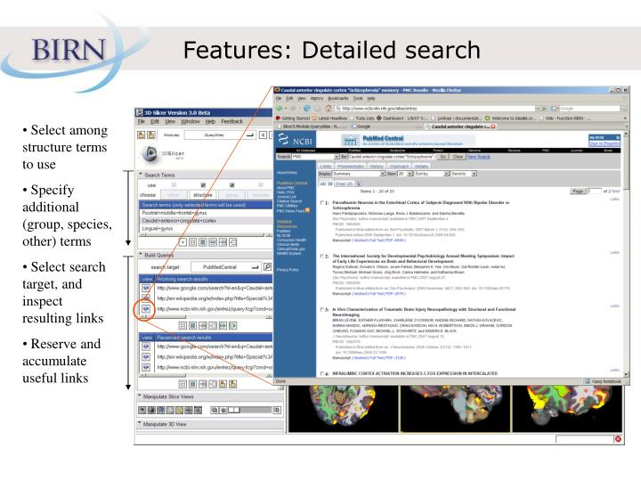 Features: Detailed search