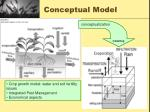 conceptual model1