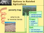 options in rainfed agriculture