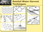 rainfall water harvest techniques1