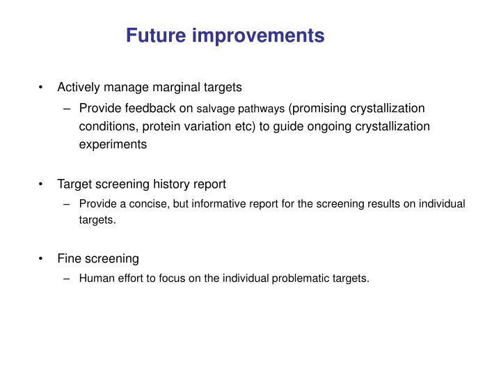 Future improvements