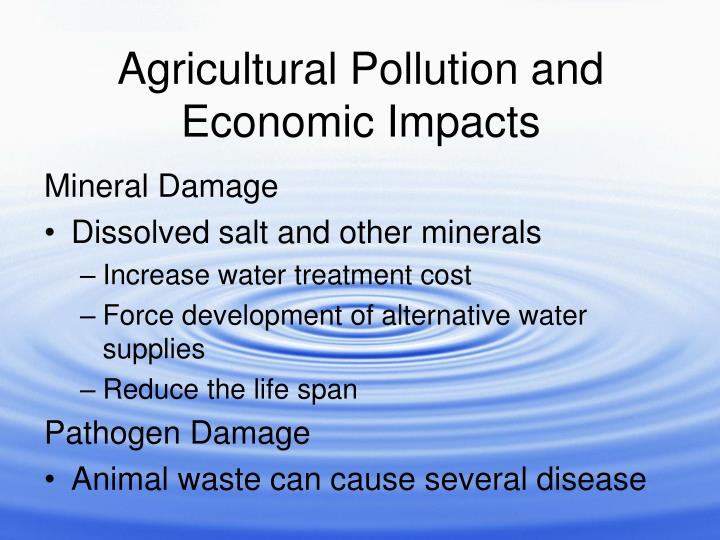 Agricultural Pollution and Economic Impacts