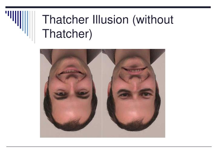 Thatcher Illusion (without Thatcher)
