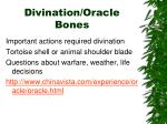 divination oracle bones