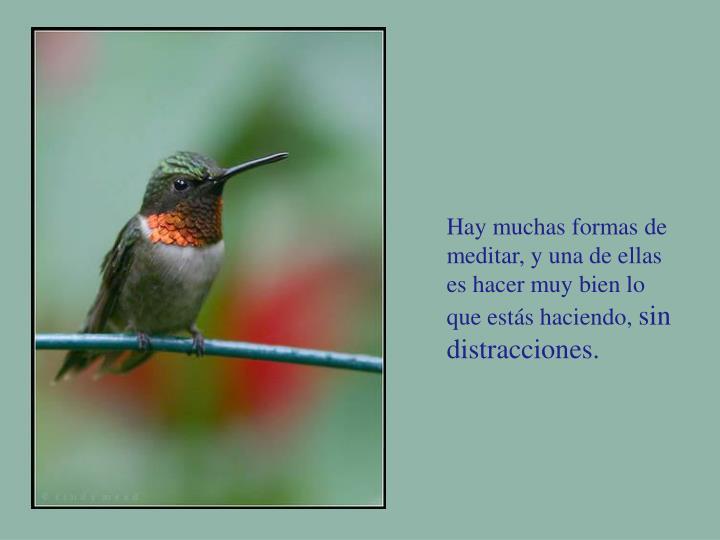 Hay muchas formas de meditar, y una de ellas es hacer muy bien lo que estás haciendo,