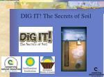dig it the secrets of soil