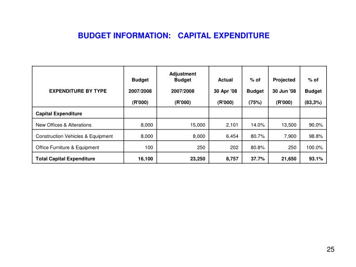 BUDGET INFORMATION:   CAPITAL EXPENDITURE