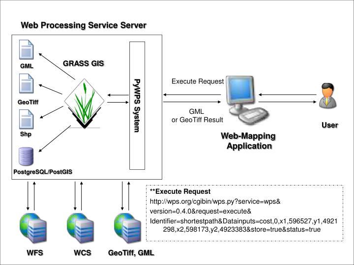 Web Processing Service Server
