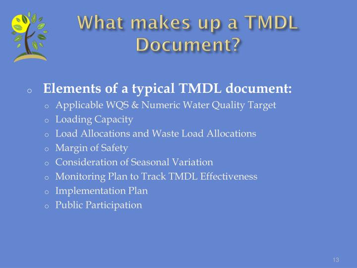 What makes up a TMDL Document?