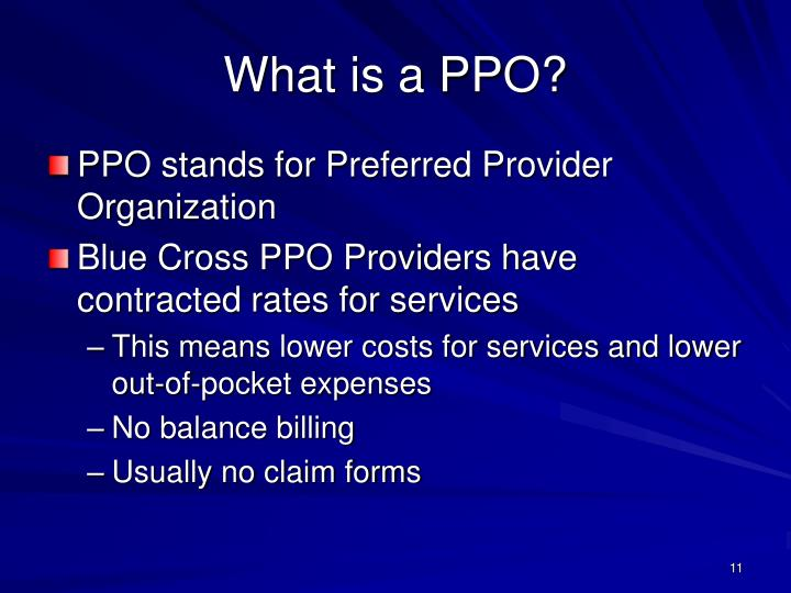 What is a PPO?