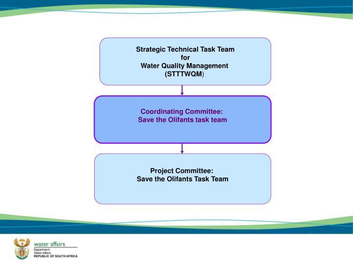 Strategic Technical Task Team