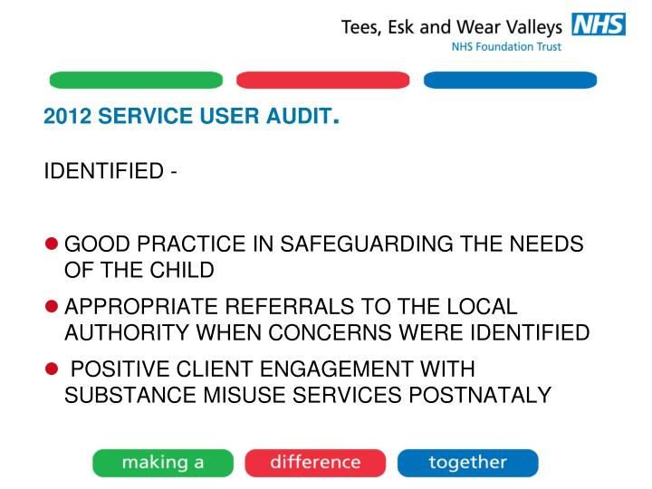 2012 SERVICE USER AUDIT