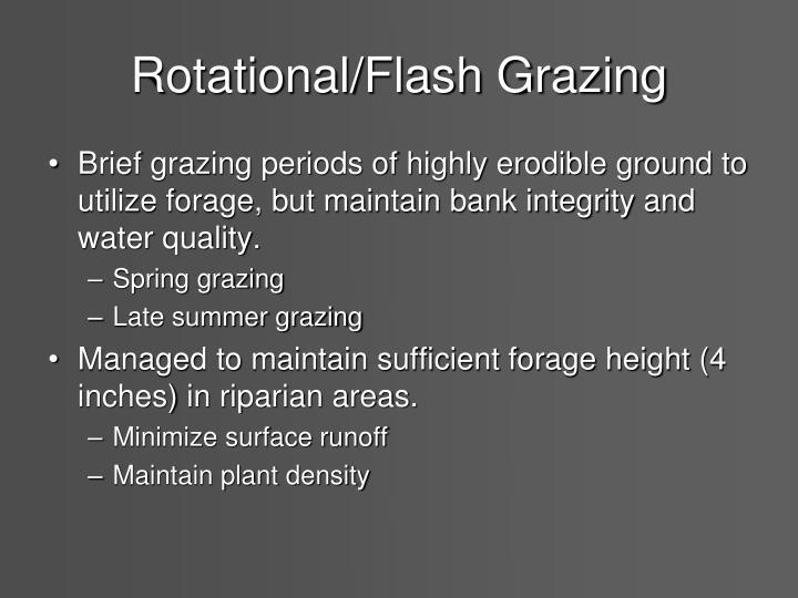 Rotational/Flash Grazing