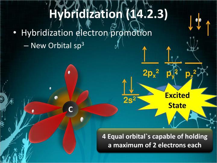 Hybridization (14.2.3)