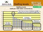 staffing levels