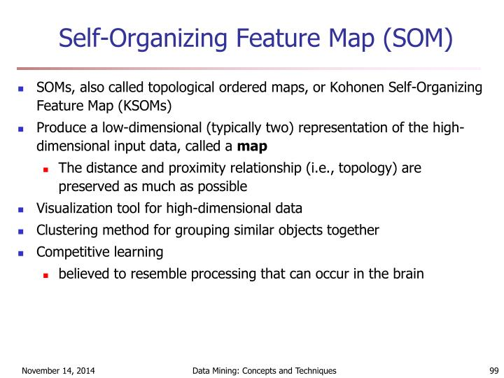 Self-Organizing Feature Map (SOM)