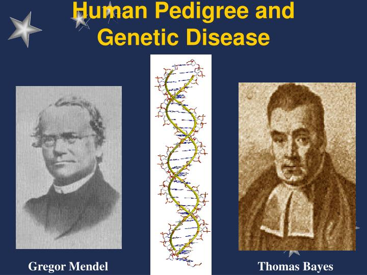 Human pedigree and genetic disease