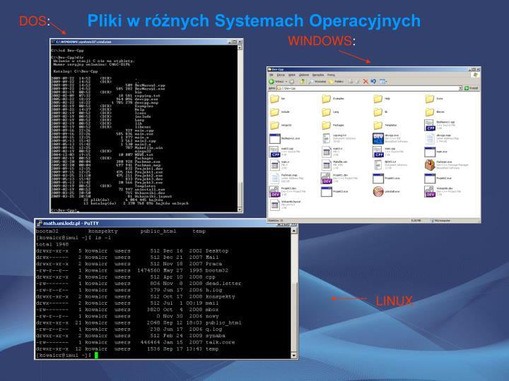 Pliki w różnych Systemach Operacyjnych