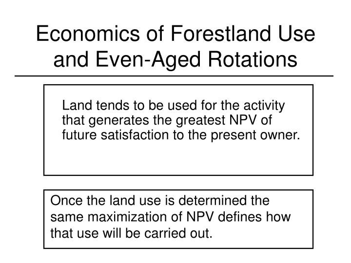 Economics of forestland use and even aged rotations