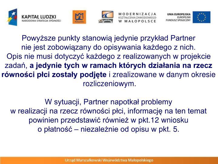 Powyższe punkty stanowią jedynie przykład Partner